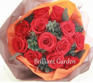 saki【Brilliant Garden】